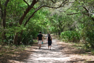 Guided Exploration Trail Walk