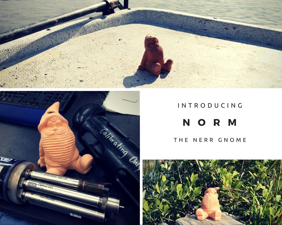 nerrds blog